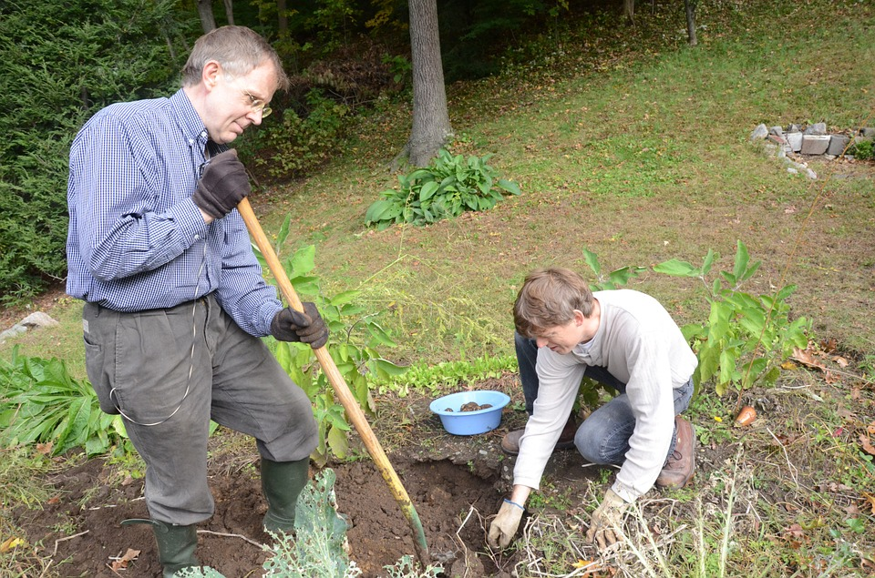 Two people digging and gardening
